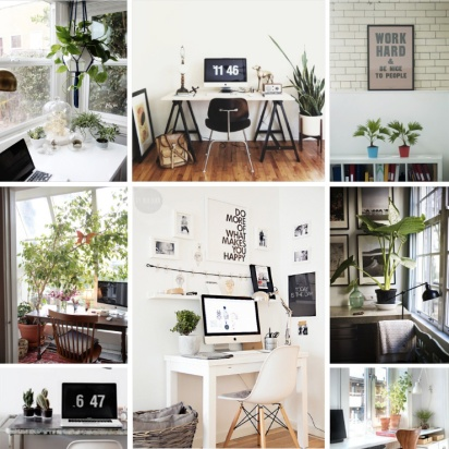 HomeOfficePlants